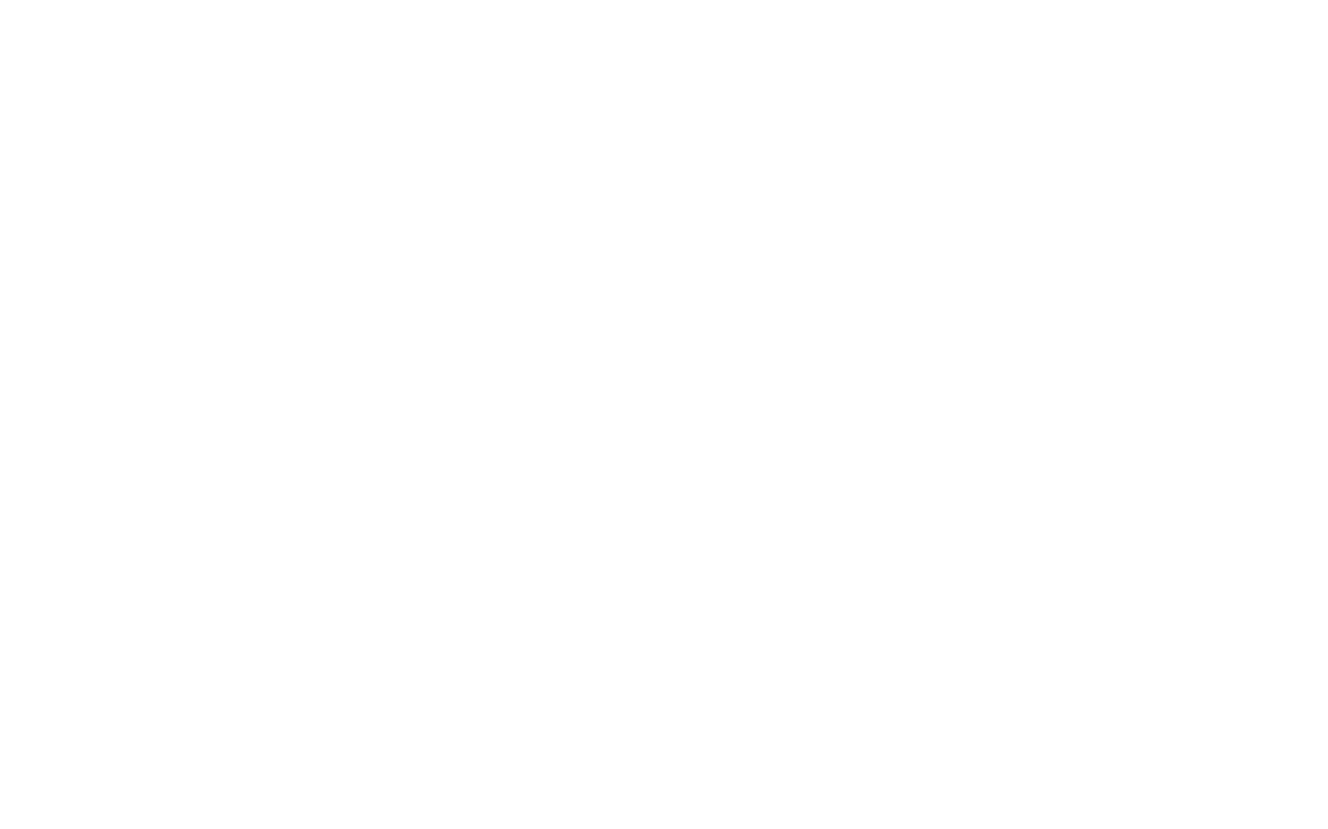 Ford wit