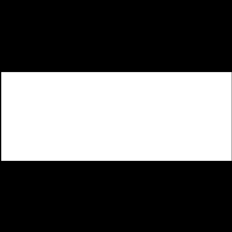 Logo_BDO_wit